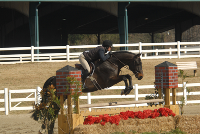 Cartaire in the First year green working hunter division